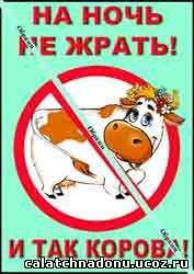 Магнитик - 2 - На ночь не жрать, и так корова